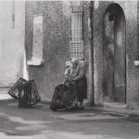 Schiavonia, 1984