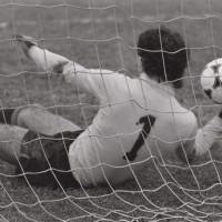 Calcio, 1981