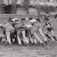 Rugby, 1983
