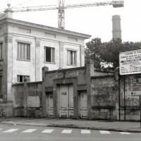 Ex Mangelli, 1988