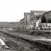 Piazza Montefeltro, 1981