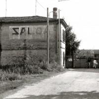 SALOA, 1980-90